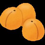 fruit_anzu